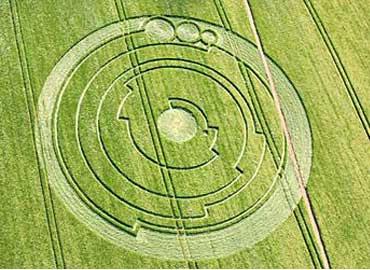 señales de trigo